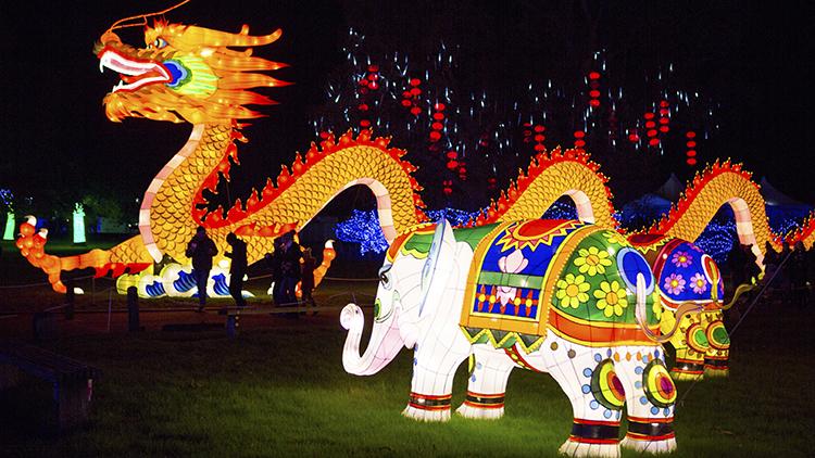 Iluminación de Dragón Festival de la linterna.