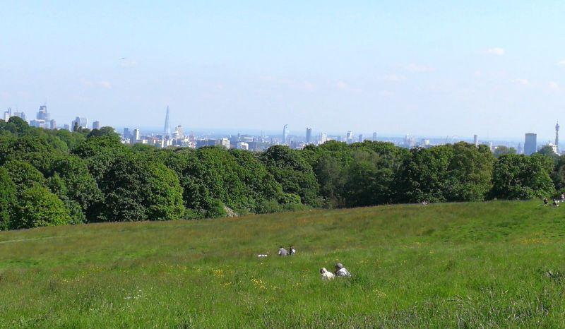 Hampstead Head views